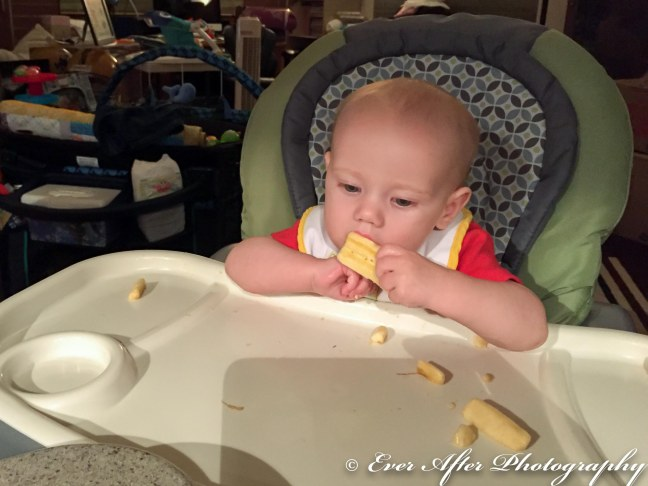 Tristan's First Foods-2